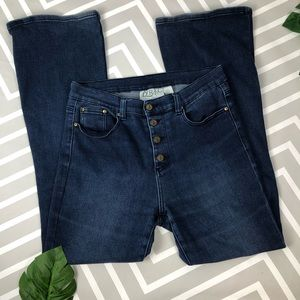 Lyric Culture Woodstock High Rise Flare Jeans 10